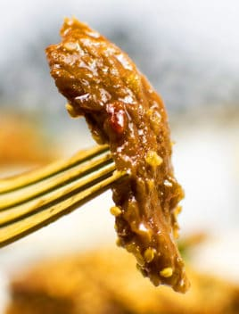 Best Mongolian Beef on Gold Fork - Closeup Shot