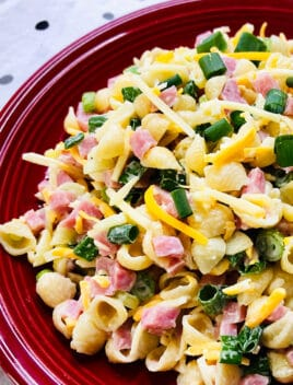 Easy Creamy Ham Pasta Salad with Mayo Dressing in Red Plate
