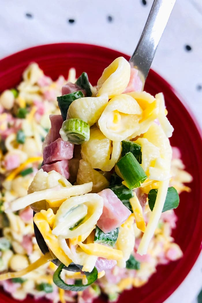 Spoonful of Ham and Macaroni Salad in Red Plate